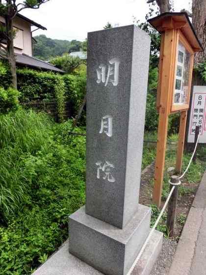 JPG_4486(明月院).jpg